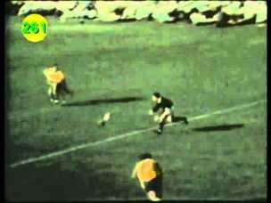 '69 wallabies durban