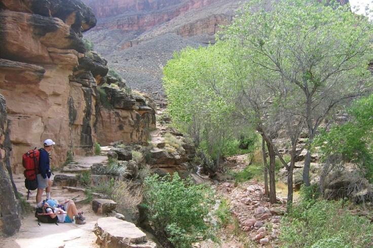 Indian Gardens Grand Canyon.jpg