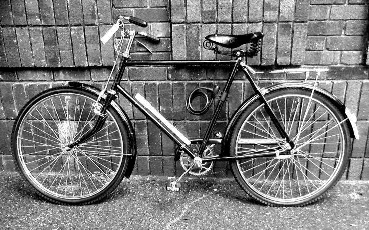 Bicycle Dikwiel deluxe.jpg