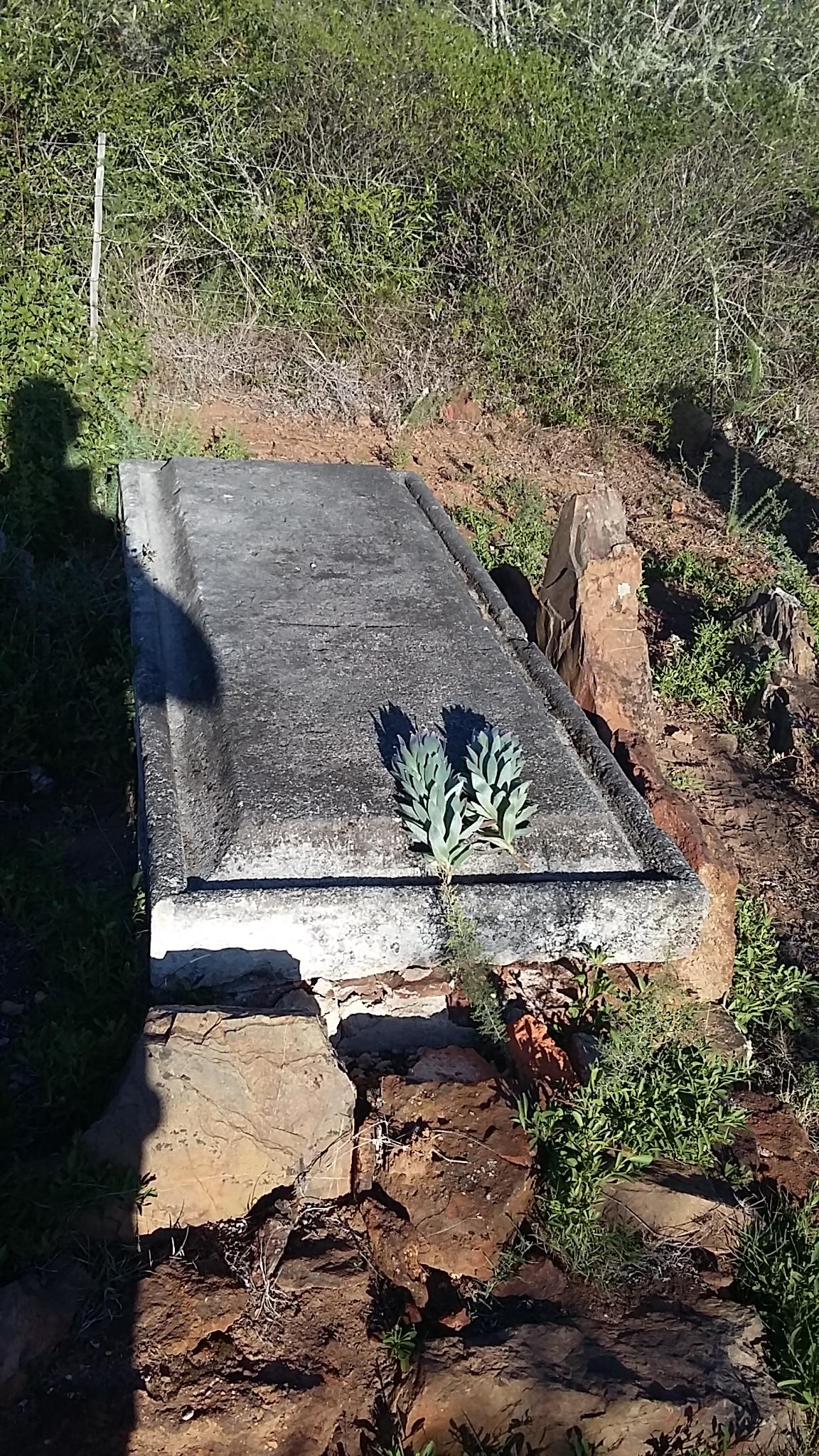 JBA Bland's grave