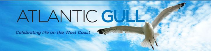 Mariette vWyk's Atlantic Gull
